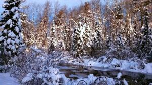 Hayward, Winter 2013