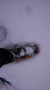 new snowshoes
