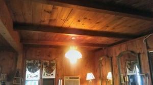 kateri-ceiling-640
