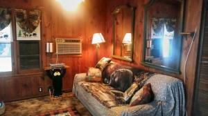 kateri-livingroom1-640