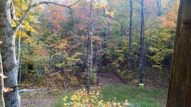 View from deer stand late September 2014