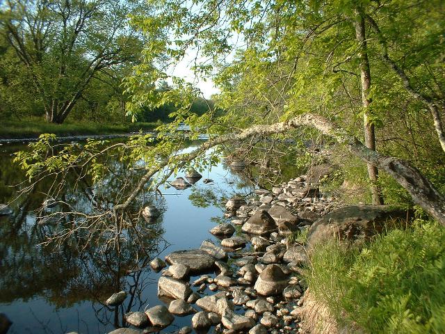 harmony.bend.lot.summer.downstream