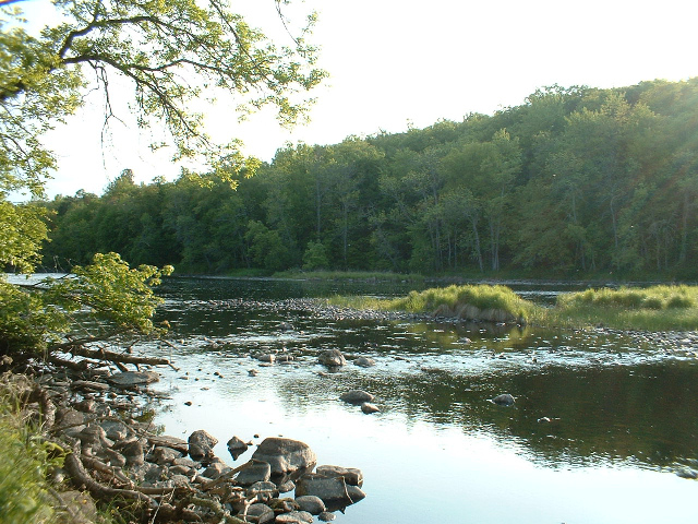 harmony.bend.lot.summer.upstream